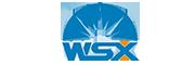 WSX Laser Head